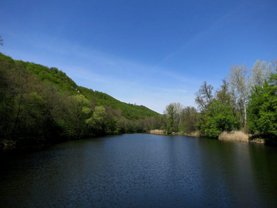 pozdĺž rieky Dyje
